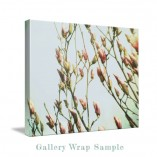Canvas Gallery Wrap Sample