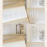 Vintage Books Runner