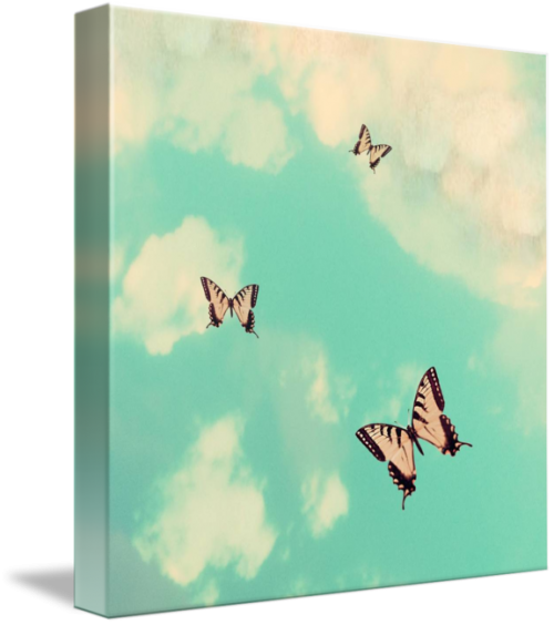 MKC Photography Butterfly Sky Canvas