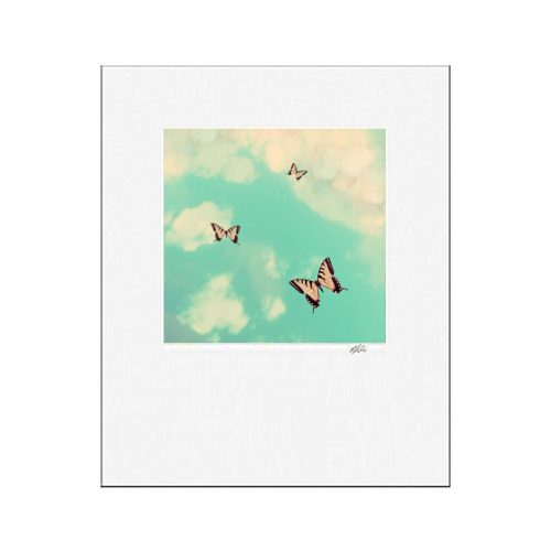 MKC Photography Butterfly Sky Matted Print