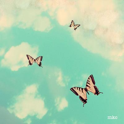 Butterfly Sky