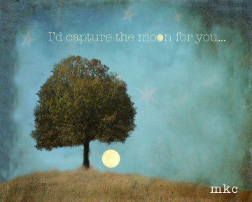 Capture the Moon