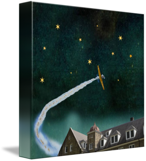 MKC Photography Alone with the Stars Canvas