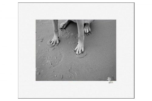 MKC Photography Sandy Paws Matted Print