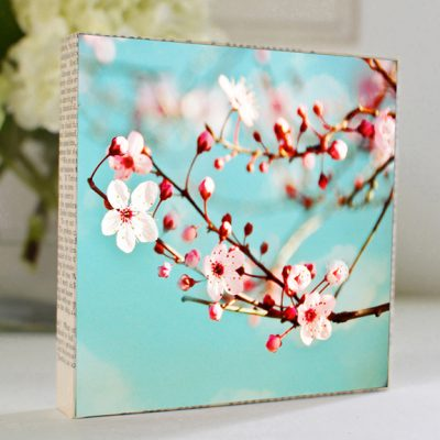 mkc-photography-blossoms-art-block