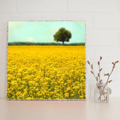 Large Art Block Yellow Fields