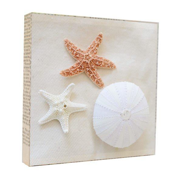 Seashells Art Block