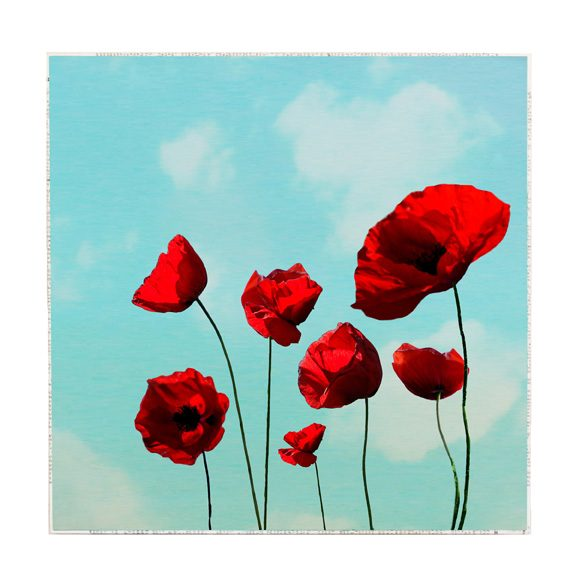 MKC Photography Poppies Large Art Block