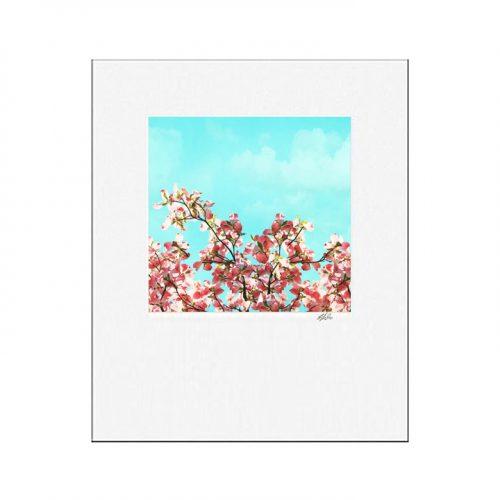 Pink Dogwood Matted Print