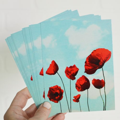 Poppies Notecards Set