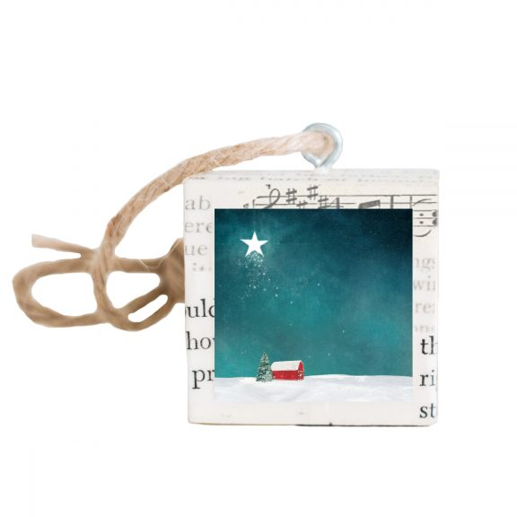 Night Star Ornament